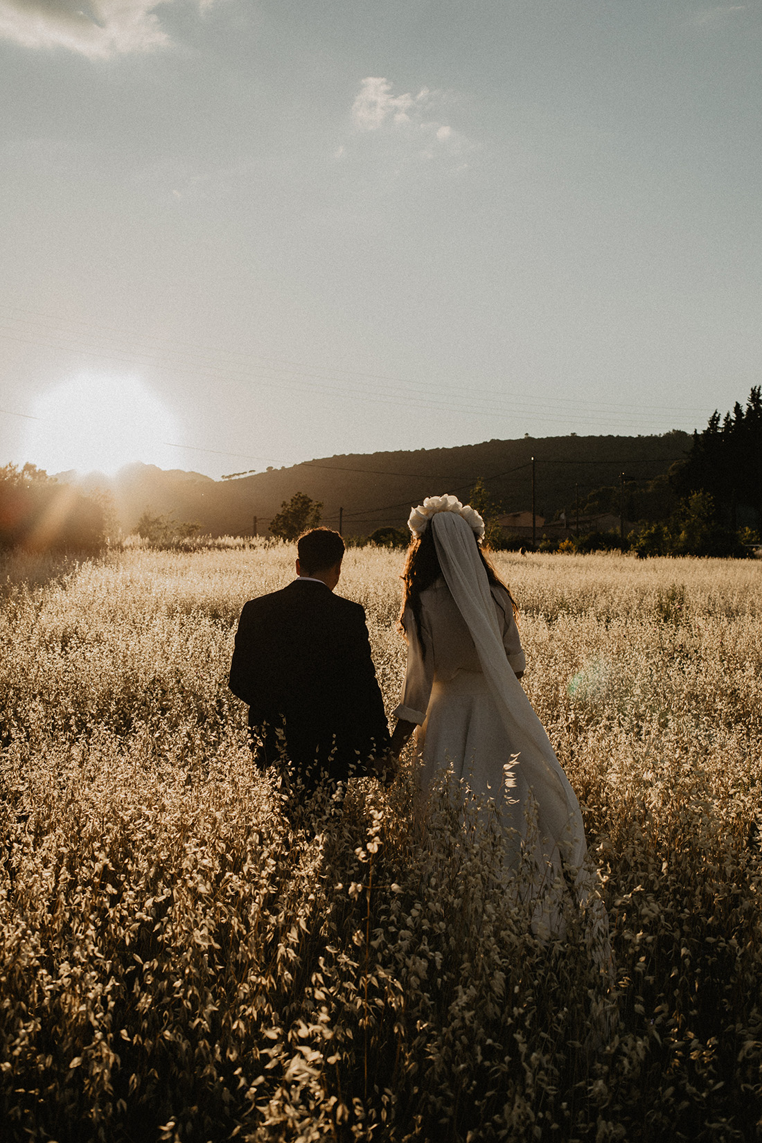 wedding couple walking by sunset in a oatfield